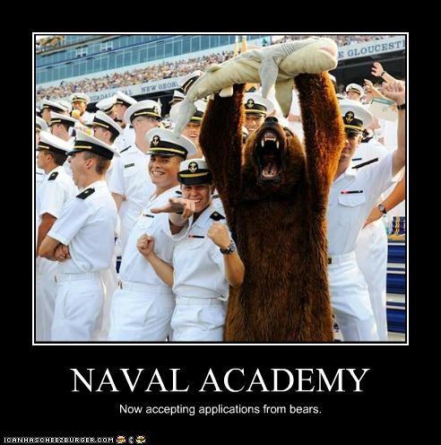 bears costume mascots military naval academy navy Pundit Kitchen - 5230725120