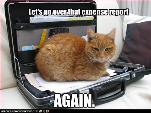 Let's go over that expense report AGAIN.