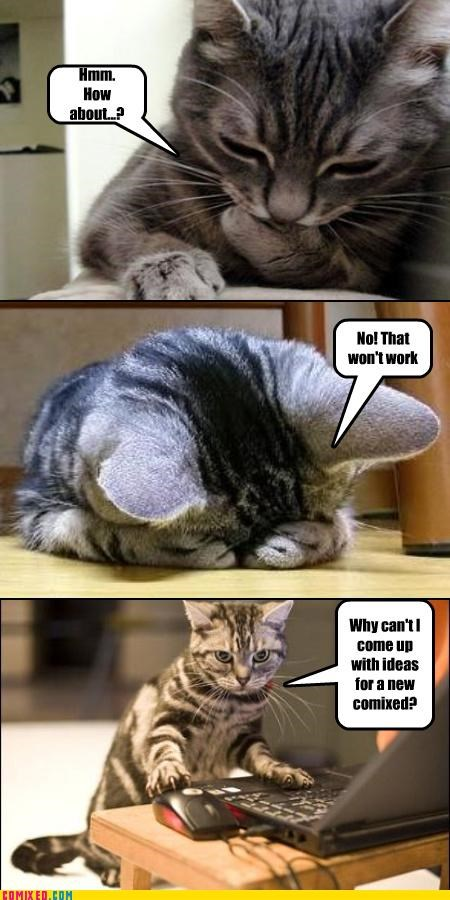 Cats comixed kittehs meta the internets tough work uh oh - 5233051648