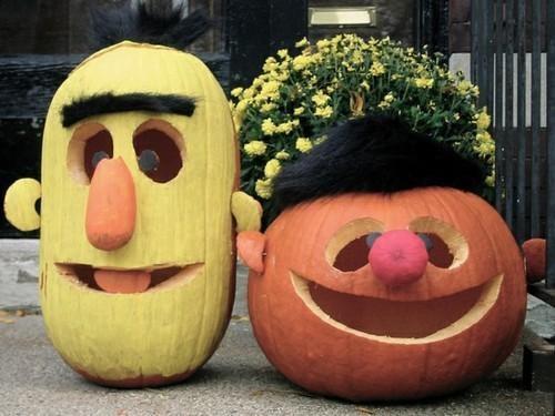 bert ernie,halloween,jack o lanterns,Muppet Pumpkins