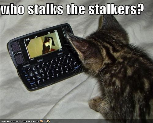 animals Cats cell phones creepy I Can Has Cheezburger phones stalkers stalking watching - 5234784000