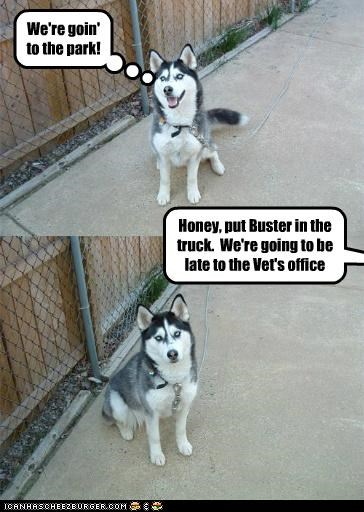 We're goin' to the park! Honey, put Buster in the truck. We're going to be late to the Vet's office