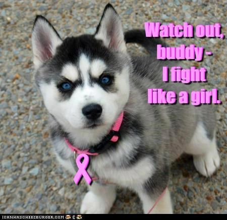 Watch out, buddy - I fight like a girl. Watch out, buddy - I fight like a girl. - -