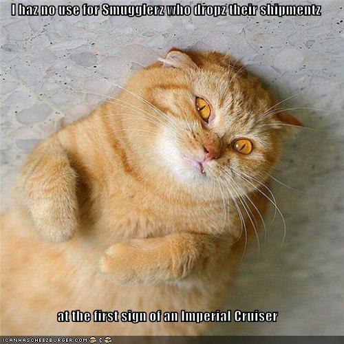 Cheezburger Image 5235709184