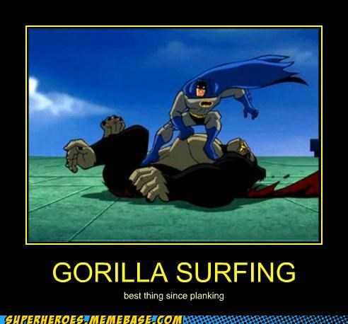 batman,gorilla,Super-Lols,surfing,wtf