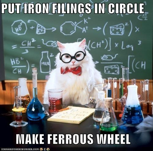 best of the week,chemistry cat,ferris wheels,ferrous,iron,memecats,Memes,puns,rides