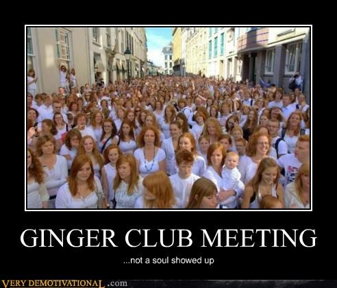 GINGER CLUB MEETING ...not a soul showed up