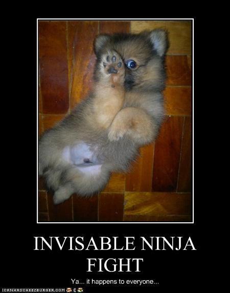 INVISABLE NINJA FIGHT Ya... it happens to everyone...