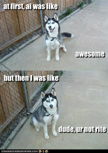 at first, ai was like awesome but then I was like dude, ur not rite
