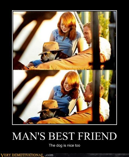 dogs hilarious mans-best-friend - 5239533824