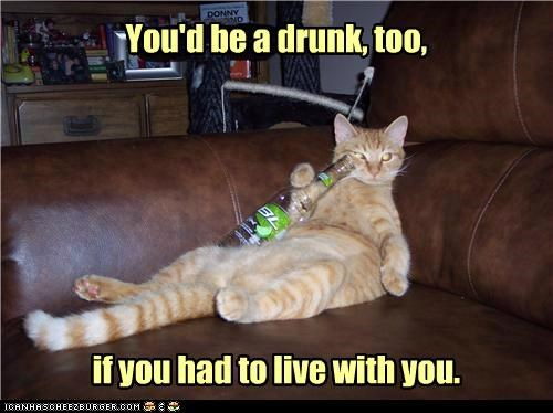 You'd be a drunk, too, if you had to live with you.