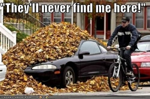 car,hidden,hidden in plain sight,incognito,leaves