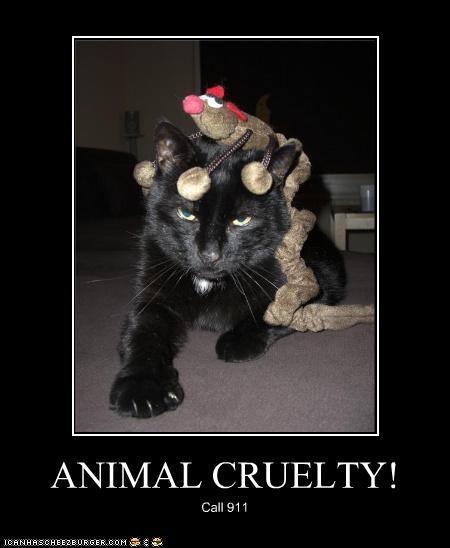 ANIMAL CRUELTY! Call 911