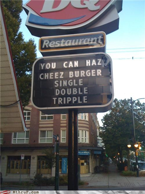 cheeseburgers cheezburger dairy queen fast food food service I Can Has Cheezburger sign