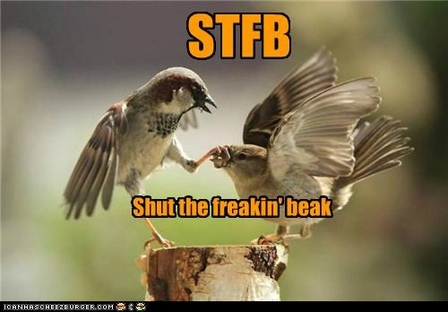 acronyms,animals,beaks,birds,I Can Has Cheezburger,shut up,stfu