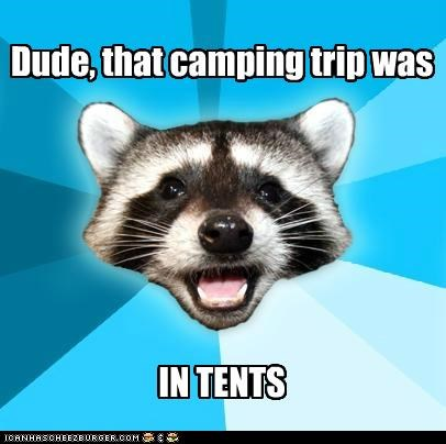 camping,intense,Lame Pun Coon,puns,tents,wood