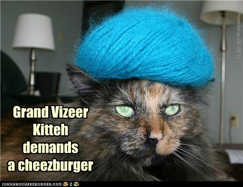 Cheezburger Image 5242794240