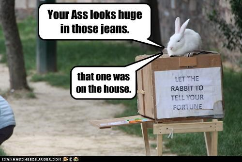 bunny,butt,caption,captioned,fortune,free,huge,jeans,looks,on the house,rabbit,telling,truth