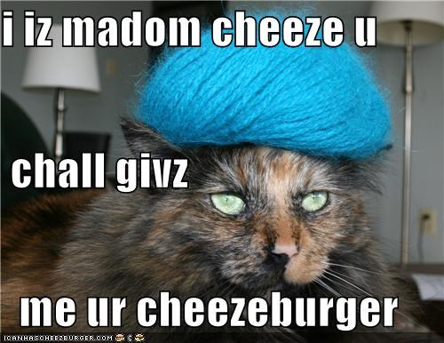 Cheezburger Image 5242903552