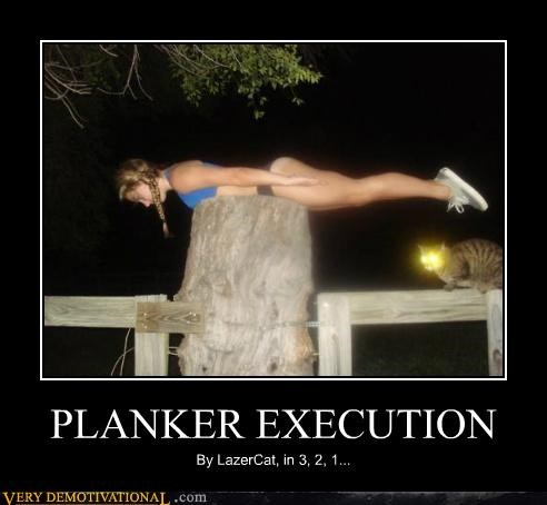 lazercat Planking Pure Awesome wtf - 5243188992