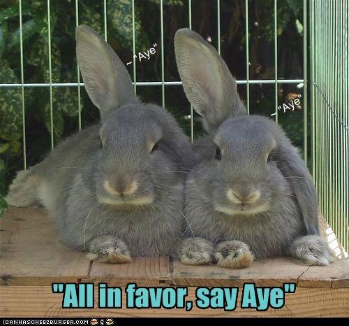 """""""All in favor, say Aye"""" ~ """"Aye"""" ~ """"Aye"""""""