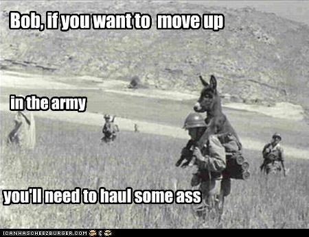 Bob, if you want to move up in the army you'll need to haul some ass