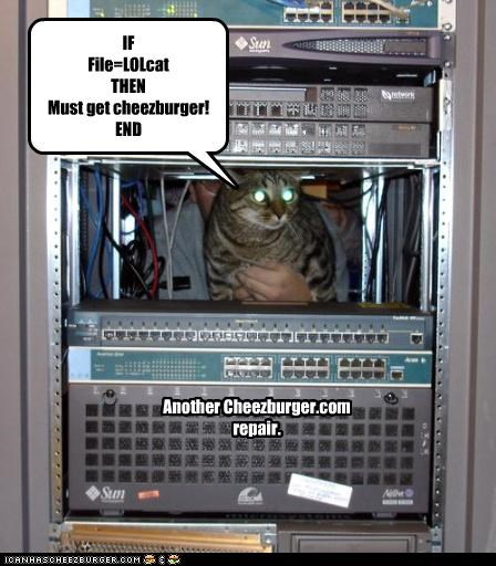 IF File=LOLcat THEN Must get cheezburger! END Another Cheezburger.com repair.