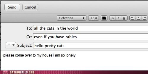 cat,cat lady,Cats,email,lonely,want ad,We Are Dating