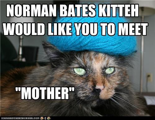 caption captioned cat lolwut meet mother norman bates resemblance - 5244475392