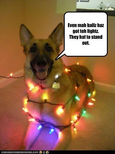 Even mah ballz haz got teh lightz. They haf to stand out.