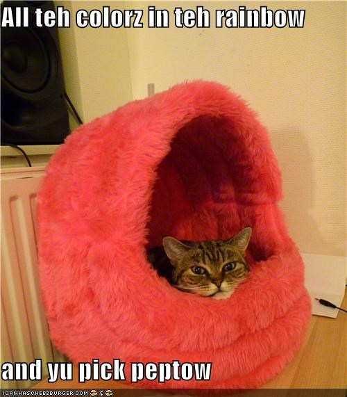 caption,captioned,cat,colors,disappoint,do not want,pepto bismol,pick,rainbow