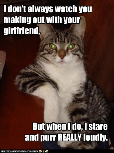 creepy kissing loud making out memecats Memes purr purring the most interesting man in the world watching - 5245121536