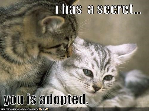 adopted classics crying mean secrets siblings whispering - 5245163776