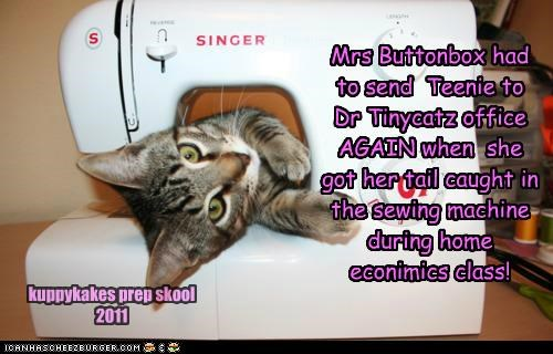 Mrs Buttonbox had to send Teenie to Dr Tinycatz office AGAIN when she got her tail caught in the sewing machine during home econimics class! kuppykakes prep skool 2011