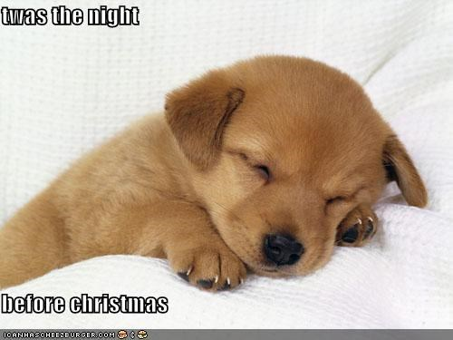 twas the night before christmas share tweet whatsapp pin it email cheezburger image 5245792512 - Funny Twas The Night Before Christmas