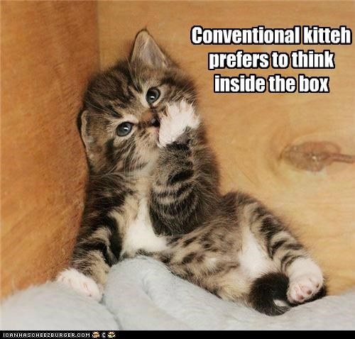 box,caption,captioned,cat,conventional,inside,kitten,preference,prefers,think