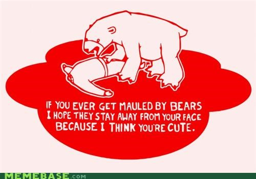 bears best of week cute emolulz wtf - 5247242752