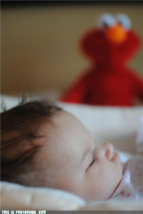 baby elmo hee hee hee Impending Doom Sesame Street SOON waiting - 5247268352