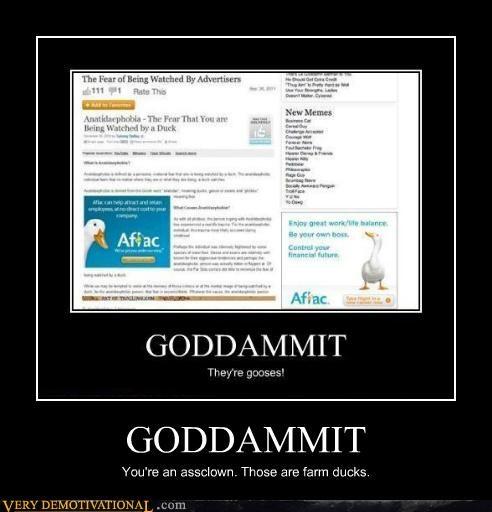 Aflac animals ducks fear gooses hilarious - 5247668736