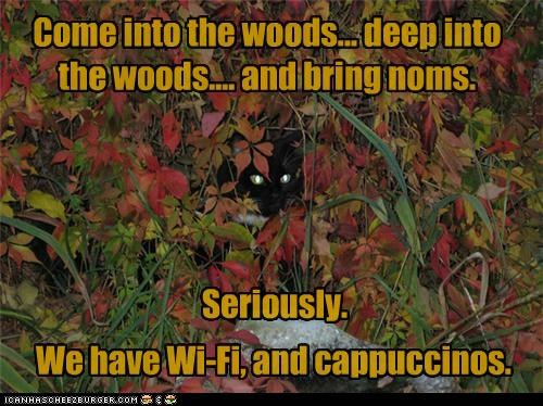 Come into the woods... deep into the woods.... and bring noms. We have Wi-Fi, and cappuccinos. Seriously.