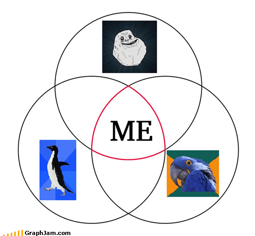 forever alone,Memes,Paranoid Parrot,socially awkward penguin,venn diagram