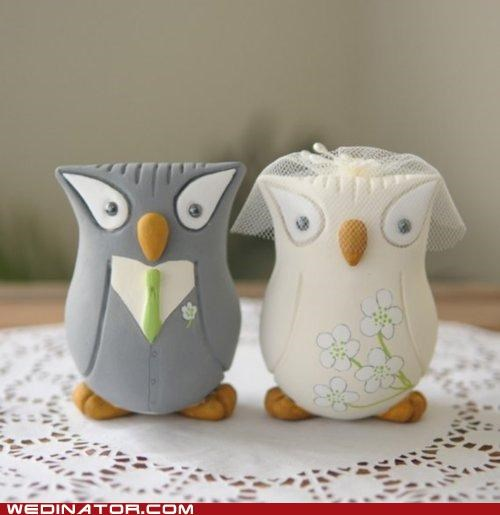 cake toppers,funny wedding photos,owls