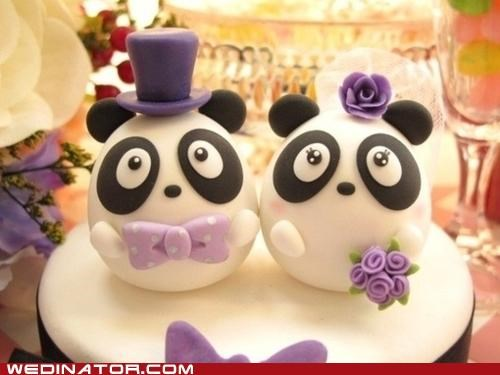cake toppers funny wedding photos panda - 5248065024