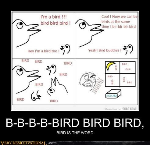 B-B-B-B-BIRD BIRD BIRD, BIRD IS THE WORD