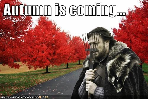 Autumn is coming...