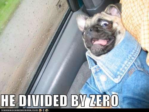 math pug shocked what wtf - 5248939008