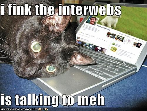 i fink the interwebs  is talking to meh