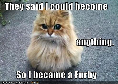 anything become best of the week caption captioned cat could decision furby Hall of Fame meme said so TLL - 5249317632
