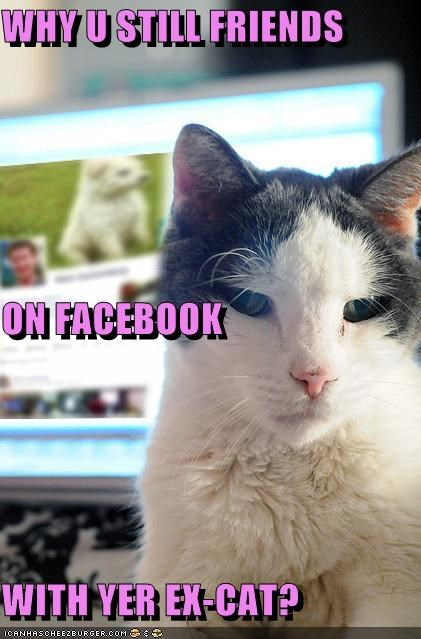 WHY U STILL FRIENDS ON FACEBOOK WITH YER EX-CAT?