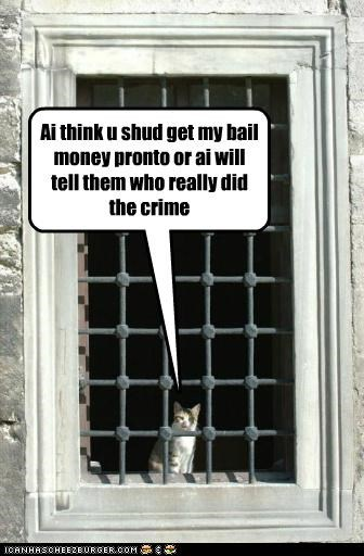 Bail me out NOW!